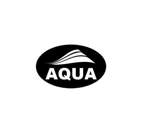 AQUA PAINT BRUSHES