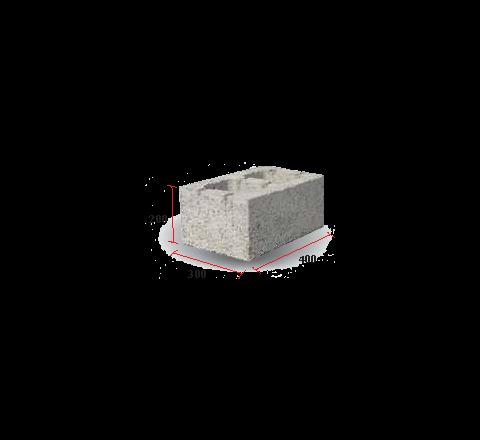 "Hollow Block 12"" (200 X 300 X 400)"